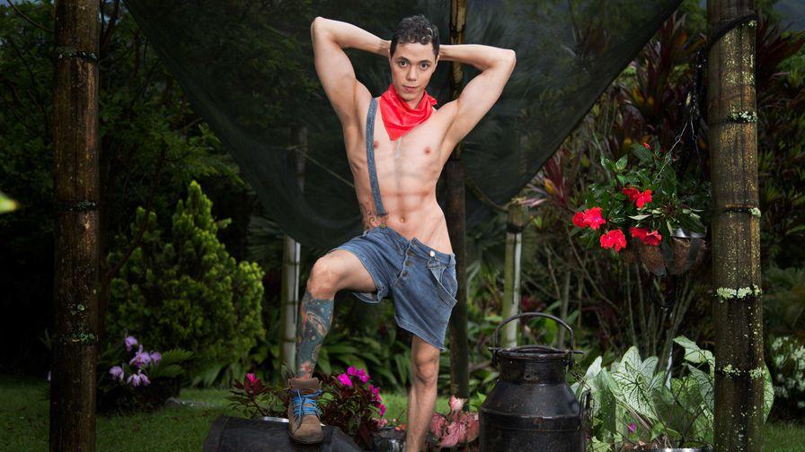 thai hieronta nokia eroottinen hieronta homo pori